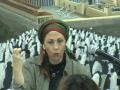 זכותה של האשה לאושר ושמחה בחייה - הרבנית הדסה עובד - יום שלישי -25.10.11